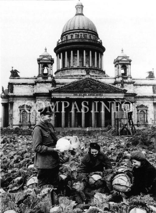 Блокадный-Ленинград-8