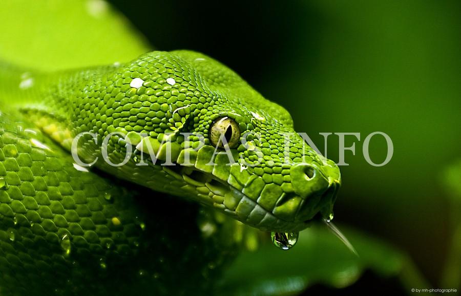 Python05