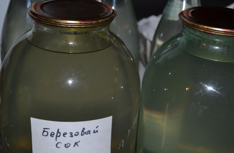 Как приготовить в домашних условиях березовый сок