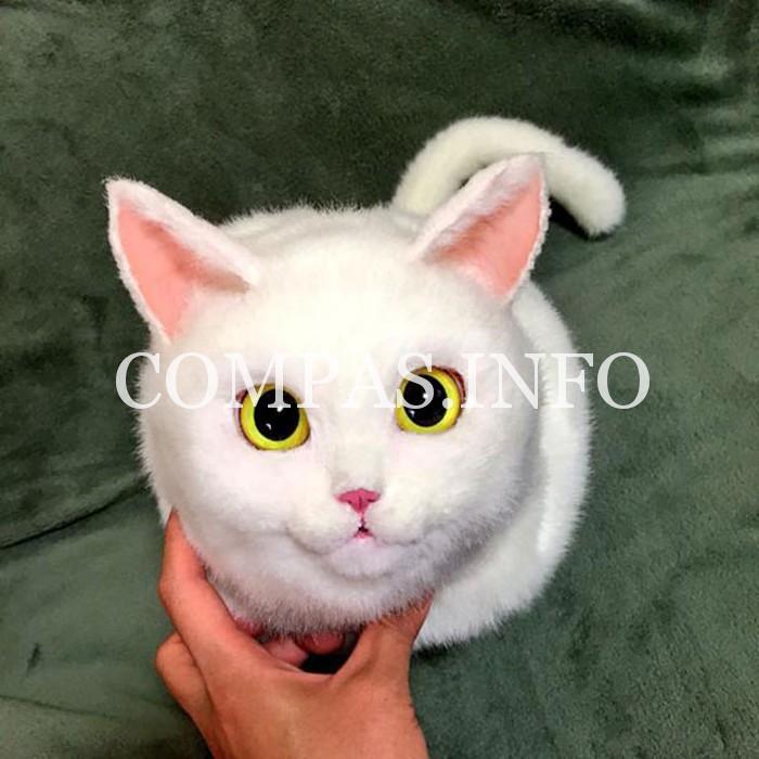 сумки-кошки4