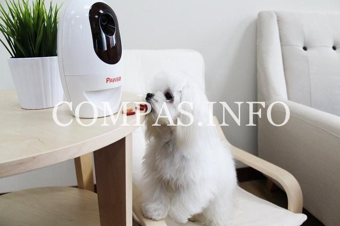 Робот присматривающий за животными3