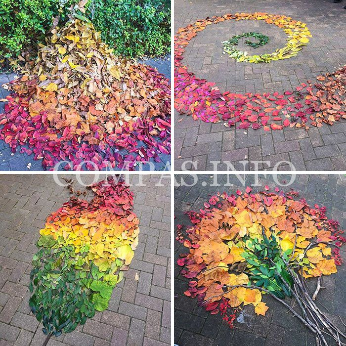 fallen-leaf-art-japan-2-585117c1d3e69__700-1